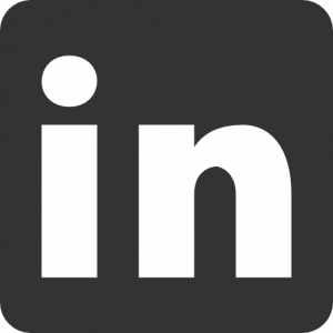 social-networks-linkedin-icon